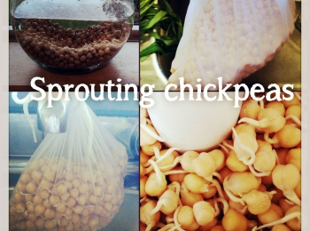 The benefits of Soaking and Sprouting (plus a Sprouted chickpea hummus recipe)